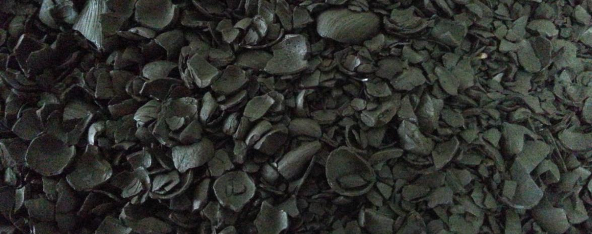 Carbonised Palm Kernel Shell Biomass