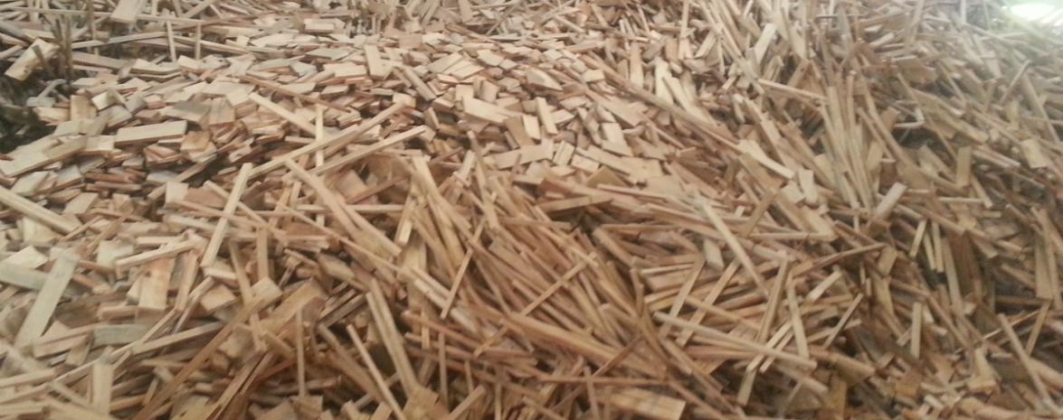Wood Chip Biomass